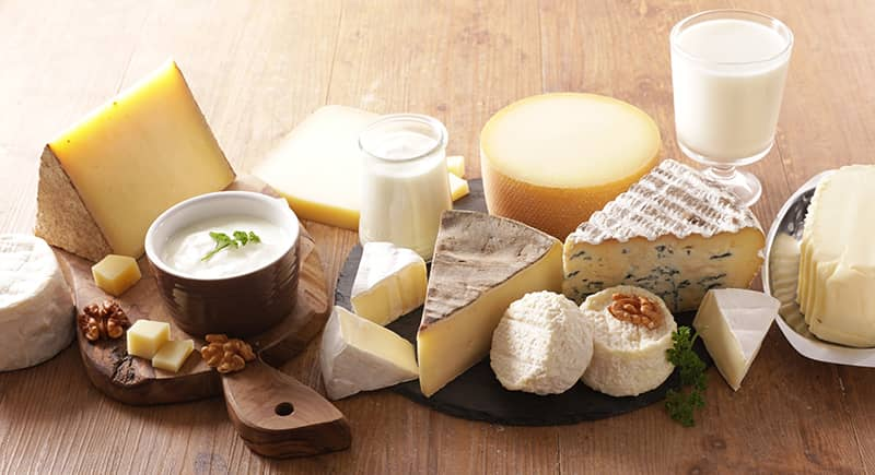 cheese manufacturer case study